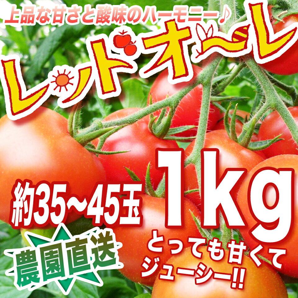 【農家直送】リコピン、ミネラルたっぷりの濃赤フルーツミディー・もぎたて・レッドオーレ!1kg トマト・ミニトマト