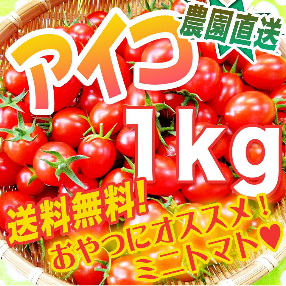 春の完熟トマト・アイコ1キロ・美味しく栄養補給♪