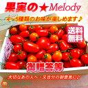 旬の春トマト・ご贈答・お祝い等に!【美味しい甘熟トマト詰め合わせ】送料無料【トマトギフト】とまと・ミニトマト8〜12種類♪果実の…