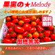トマト・ご贈答・ご自宅用にも!【美味しい甘熟トマト詰め合わせ】送料無料【トマトギフト】とま…