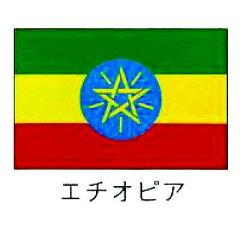 【送料無料・国旗販売/サイン】旗 世界の国旗 エチオピア 140×210【smtb-TK】