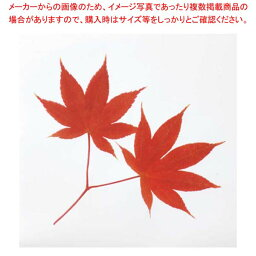 ミリオンフィルムシート(1000枚入)紅葉