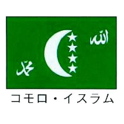 【 業務用 】旗 世界の国旗 コモロ・イスラム 70×105:業務用厨房機器の飲食店厨房館