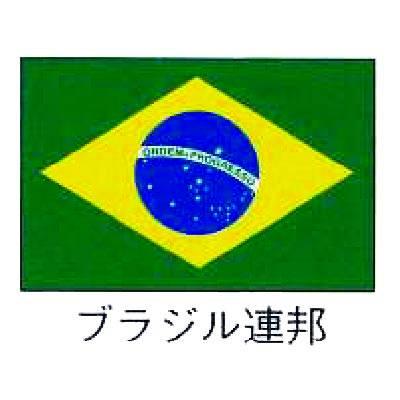 【 業務用 】旗 世界の国旗 ブラジル連邦 120×180:業務用厨房機器の飲食店厨房館