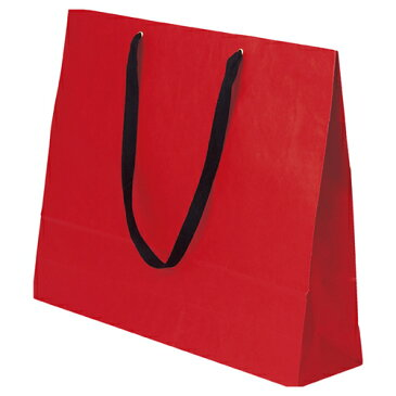 【まとめ買い10個セット品】 ショルダーバッグ カラー ルージュ 10枚【店舗備品 包装紙 ラッピング 袋 ディスプレー店舗】【厨房館】