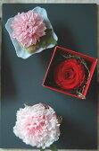 フルーレット・ダリア*母の日定番のカーネーション。感謝の花言葉のダリア。人気の高いバラ。母の日にはどのタイプを贈りますか?/母の日/プリザーブドフラワー/花電報/ギフト/誕生日/イベント