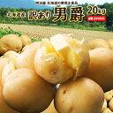 じゃがいも 送料無料 男爵 20kg 訳あり 北海道産 ニセコ産 サイズ混み ジャガイモ 芋 ダンシャク わけあり ワケアリ 訳男