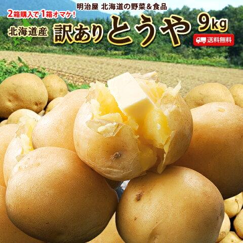 訳あり じゃがいも 送料無料 9kg とうや 北海道産 ニセコ産 低農薬栽培 B品 ジャガイモ 芋 トウヤ わけあり ワケアリ 野菜 訳とうや