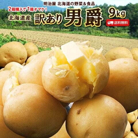訳あり じゃがいも 送料無料 9kg 男爵 北海道産 ニセコ産 B品 ジャガイモ 芋 ダンシャク わけあり ワケアリ 野菜