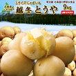訳ありじゃがいも9kg小さなとうや送料無料北海道産ニセコ産低農薬栽培Sサイズジャガイモ芋トウヤわけありワケアリ野菜