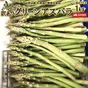 わけありアスパラ 送料無料 1kg S-Lサイズ混み 北海道 ニセコ産 低農薬栽培 グリーンアスパラ 朝採り直送 クール便 アスパラガス 冷蔵便 野菜 訳あり野菜 わけあり 訳あり ワケアリ