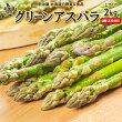 【送料無料】北海道ニセコ町グリーンアスパラLサイズ2kg