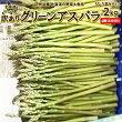 【訳あり】【送料無料】北海道ニセコ産グリーンアスパラ1kg