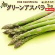 【送料無料】北海道ニセコ町グリーンアスパラ2Lサイズ以上1kg