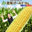【送料無料】北海道ニセコ産とうもろこし恵味ゴールド10本