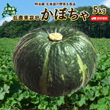 かぼちゃ 送料無料 5kg 北海道 ニセコ産 秀品 低農薬栽培 北海道産 カボチャ ハロウィン