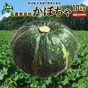 かぼちゃ 送料無料 10kg 北海道 ニセコ産 秀品 低農薬...