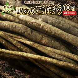 送料無料北海道ルスツ産土付きごぼう10kg