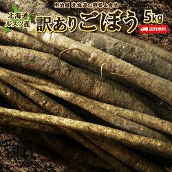送料無料北海道ルスツ産土付きごぼう5kg