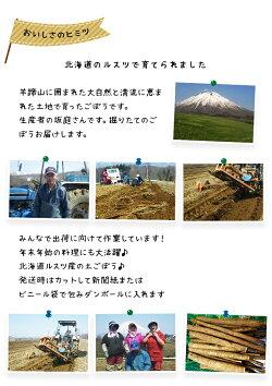 ごぼう5kg北海道ルスツ産土付き訳あり混みサイズ送料無料送料込みごぼう茶国産わけありワケアリゴボー牛蒡