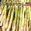 【送料無料】北海道産天然根曲がり竹5kg生