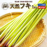 ふき 送料無料 1kg 生 北海道 ニセコ産 天然 春の山菜 冷蔵便 フキ 蕗