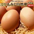 たまご自然卵50個送料無料北海道産赤玉鶏破損保証10個含む平飼い放し飼い送料込み卵玉子タマゴ
