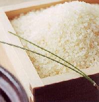 米・雑穀, 白米  R2 20kg 102 R2 10 10