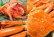 ずわい蟹 送料無料 ずわいがに1杯+甘エビ100gずわい蟹 姿身をボイルし冷凍ズワイガニ&甘えび100g訳あり ワケアリ わけあり セール 送料込 価格ずわいかに ずわいカニ ズワイ蟹 ズワイカニ限定 楽天 通販 価格 特価 販売 お土産
