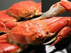 日本海産 ズワイガニずわいがに オス 1杯 5Lサイズ国産ずわい蟹 送料無料ポイント10倍 10倍...