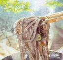年越しそば 年越し蕎麦 ご注文 予約 にも送料無料 越前そば6食セット お徳用お蕎麦 麺つゆ付き...