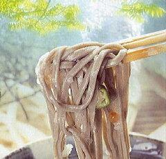年越しそば 用 年越し 蕎麦 年越そば ご予約 近日着もok【送料無料】越前そば6食セット お徳用...
