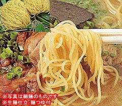 福井ラーメン(16食入り)とんこつ風味昔ながらの味 中華そばシリーズ生めん仕立 豚骨風味ス...