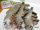 えび ブラックタイガー 12尾×4個入ウシエビ 牛海老 うしえびエビ 海老 養殖ブラックタイガーエビ限定 楽天 通販 価格 特価 販売 お土産