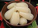 塩らっきょう 送料無料 国産 塩らっきょう漬けのラッキョウ 2kg(樹脂製容器入) 塩漬けらっきょう 3年堀 ...