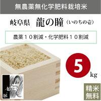 無農薬無化学肥料栽培米岐阜県下呂産龍の瞳(いのちの壱)5kg玄米平成30年産