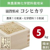 無農薬無化学肥料栽培米滋賀県高島産コシヒカリ5kg