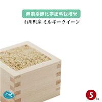 無農薬無化学肥料栽培米石川県加賀産ミルキークイーン5kg