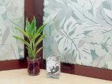 【947140】窓飾りシート(ガラスフィルム) GLC-9208 (クリアー) プライバシー保護 92cmx90cm aa