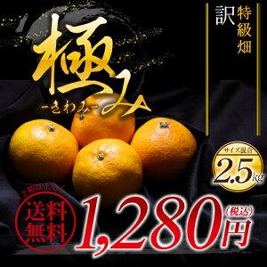 産地直送和歌山県の特級畑で育った味が濃縮した極み訳ありの有田みかん(サイズ混合)2セットで...