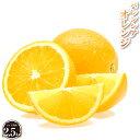 バレンシアオレンジ 2.5kg【ギフト用】 産地直送 和歌山県 国内 国産 送料無料 オレンジ 完熟 果物 フルーツ 美味しい おいしい 甘味 酸味 糖度 甘い 箱買い 箱