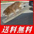 ペットステップ ロング☆耐荷重225kgまで 愛犬の通院、車・階段などの昇降にペット用スロープ(※北海道・沖縄・離島は送料別途)【特価セール】
