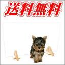 ペット用ゲート クリアゲート ウッディ☆体重8kg以下の犬ちゃんに!お部屋の入口や階段の下などの間仕切りにアクリル製の透明なペットゲート