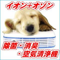 イオン+オゾン!除菌・消臭・空気清浄機 エアーサクセス プロ AM-PA20W☆病院でも使われ…