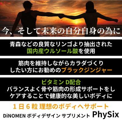 サプリメントDiNOMENボディデザインPhiSix180粒筋肉ケア脂肪燃焼骨成形促進ブラックジンジャークラチャイダムウルソール酸ビタミンDメール便送料無料メンズレディース