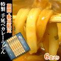 【数量限定】安城和泉名物「麺のたつみ」特製 手延べカレーうどん