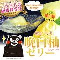 柑橘類日本一「晩白柚(ばんぺいゆ)」のお菓子