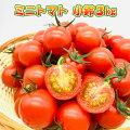ミニトマト[小鈴]3kg