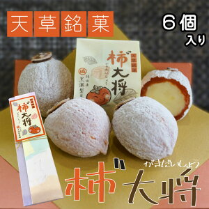 Kaki N General (6 pieces) [Japanese persimmon sweets] [Kumamoto specialty] [Kurose confectionery] Ichida persimmon Kumamoto Amakusa Souvenir Dried persimmon White bean paste Koshian Japanese sweets Sweets Sweets Sweets Kumamoto confectionery Higo famous confectionery Unusual petit gift Back-order gift Valentine Valentine's birth gift Wedding gift Higanki White Day Free shipping