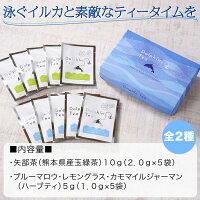 イルカの形のティーバッグ【ブルーBOX】